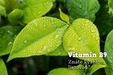 Vitamín B9