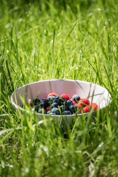 potraviny pro zdravé a husté vlasy